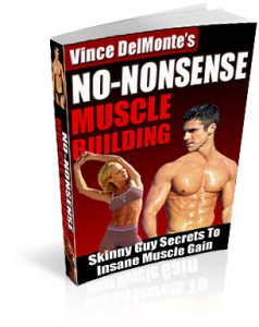 Vince delmonte muscle building ebook