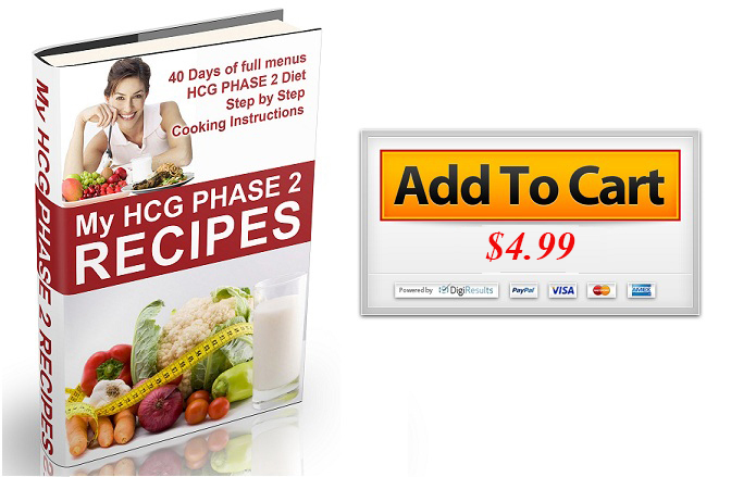 My HCG Phase 2 Diet Recipes BUY 4 99